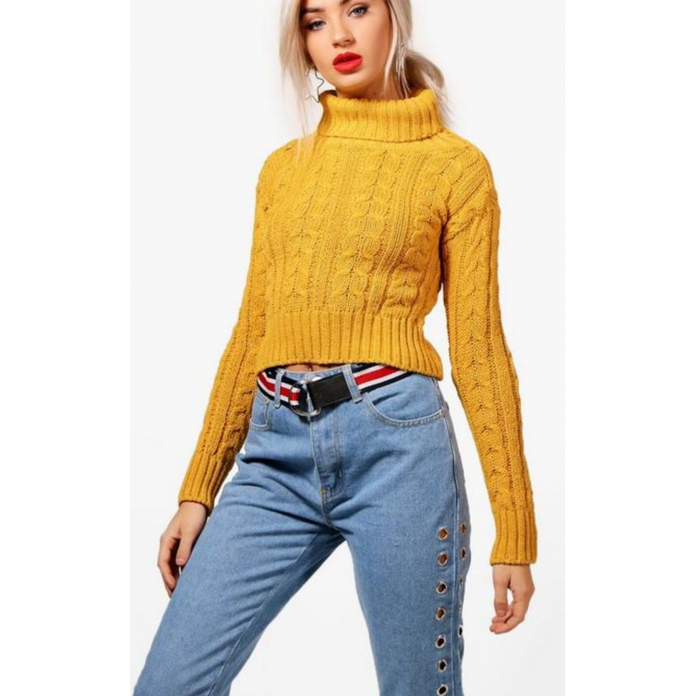 0b224143d65 Mustard Polo Neck Crooped Jumper