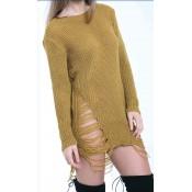 Knitwear (66)
